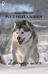 Sędzikowska Joanna - Psy z piekła rodem zdobywca świata