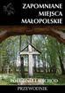 Porębski Mateusz - Zapomniane Miejsca Małopolskie. Południe i wschód