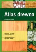 Jean Denis Godet - Poradnik leśnika. Atlas drewna