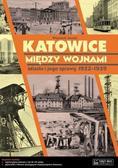 Janota Wojciech - Katowice między wojnami