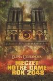 Czudinowa Elena - Meczet Notre Dame. Rok 2048