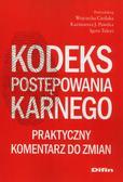 Cieślak Wojciech, Pawelec Kazimierz J., Tuleya Igor - Kodeks postępowania karnego. Praktyczny komentarz do zmian