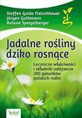 Opracowanie zbiorowe - Jadalne rośliny dziko rosnące. Lecznicze właściwości i składniki odżywcze 200 gatunków polskich roślin (dodruk 2017)