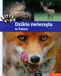Wąsik Sławomir - Dzikie zwierzęta w Polsce Piękne ciekawe wyjątkowe