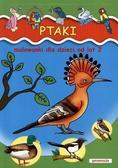 Opracowanie zbiorowe - Malowanki. Ptaki - dla dzieci od lat 2