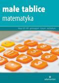 Mizerski Witold - Małe tablice Matematyka (wyd. 2017)