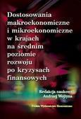 Wojtyna Andrzej - Dostosowania makroekonomiczne i mikroekonomiczne w krajach na średnim poziomie rozwoju po kryzysach