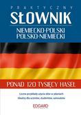 Patryk Łapiński - Praktyczny słownik niem.- pol., pol.- niem.