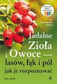 Beiser Rudi - Jadalne zioła i owoce lasów, łąk i pól - jak je rozpoznawać