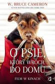 W. Bruce Cameron, Edyta Świerczyńska - O psie, który wrócił do domu