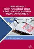 Sądowe mechanizmy ochrony praworządności w Polsce w świetle najnowszego orzecznictwa Trybunału Sprawiedliwości UE