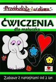 Agnieszka Wileńska - Przedszkole w domu. Ćwiczenia dla maluszka