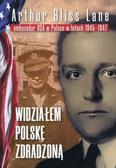 Lane Arthur Bliss - Widziałem Polskę zdradzoną