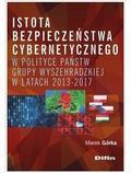 Marek Górka - Istota bezpieczeństwa cybernetycznego w polityce