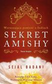 Sejal Badani - Sekret Amishy