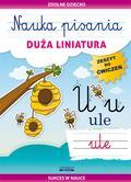 Guzowska Beata - Nauka pisania Duża liniatura. Zeszyt do ćwiczeń. Sukces w nauce