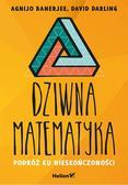 Banerjee Agnijo, Darling David - Dziwna matematyka. Podróż ku nieskończoności
