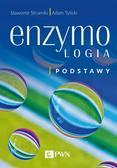 Strumiło Sławomir, Tylicki Adam - Enzymologia Podstawy