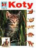 Kothe Rainer - Co i jak Tom 27 Koty