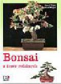 Stahl Horst, Ruger Helmut - Bonsai z drzew rodzimych