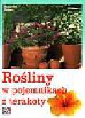Peters Susanne - Rośliny w pojemnikach z terakoty
