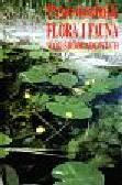 Engelhardt Wolfgang - Flora i fauna wód śródlądowych - Przewodnik