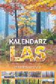 Kalendarz 2005  Las praktyczny