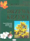 Reichholf H. Josef i Steinbach Gunter (red.) - Wielka encyklopedia Drzewa krzewy