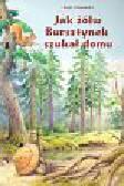 Ostrowski Eryk - Jak żółw Bursztynek szukał domu