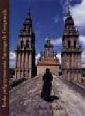Bujak Adam - Łaska pielgrzymowania Santiago de Compostela