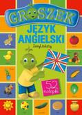Pilarczyk Małgorzata - Groszek Język angielski Zeszyt zielony