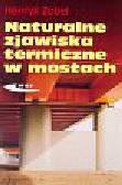 Henryk Zobel - Naturalne zjawiska termiczne w mostach