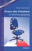 Cyrankowski Jakub - Praca dla Polakow w Unii Europejskiej