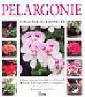 Cooke Blaise - Pelargonie Poradnik ogrodniczy