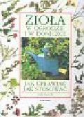 Clevely Andi - Zioła w ogrodzie i w doniczce