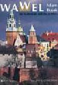 Bujak Adam - Wawel die kathedrale und das schloss