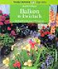 Mayer Joachim - Balkon w kwiatach