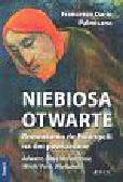 Palmisano Francesco Dario - Niebiosa otwarte t.2