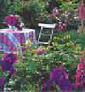 Kalendarz 2004 Wymarzone ogrody