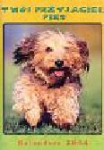 Kalendarz 2004 Twój przyjaciel pies