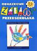 Bojakowska Alina, Mantyk Wiesława - Obrazkowe zabawy przedszkolaka 5-6 lat