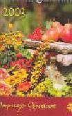 Kalendarz ścienny 2003 Impresje ogrodowe