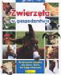 Wójcik Grzegorz - Zwierzęta w gospodarstwie