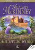 McKinney Meagan - Zamek na wrzosowiskach