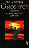 Brumlik Michał - Gnostycy