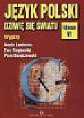 Lewińska Aneta i inni - Język polski 6