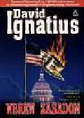 Ignatius David - Wbrew zasadom