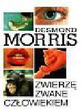 Morris Desmond - Zwierzę zwane człowiekiem