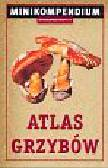 Atlas grzybów Minikompedium