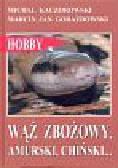 Kaczorowski Michał - Wąż zbożowy amurski chiński